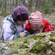 Vi som er i mot at investoren Ringnes skal få benytte store deler av Ekeberg-skogen (et areal tilsvarende 40 fotballbaner) etter eget forgodtbefinnende og til fortrengsel for alle oss som bruker området til idrettslige aktiviteter, hundelufting og rekreasjon,