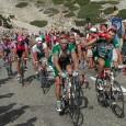 Hva betyr den uavklarte dopingsaken mot Contador for Tour de France? Hvorfor falt ikke dommen før sykkelfesten og årets største idrettsbegivenhet? Vil usikkerheten rundt Contador skygge over alt det flotte og spennende som skjer under TdF?